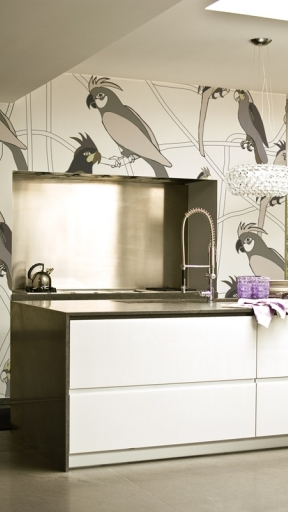 FUNNY PARROTS by Wall and Deco