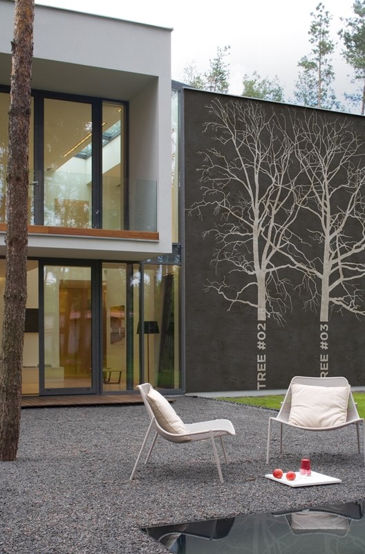 Tree Wall Paper Outdoors